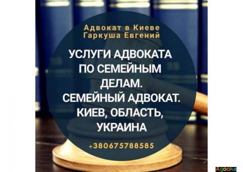 Консультация адвоката в Киеве по любым вопросам.