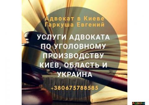 Правовая помощь адвоката по уголовным делам.